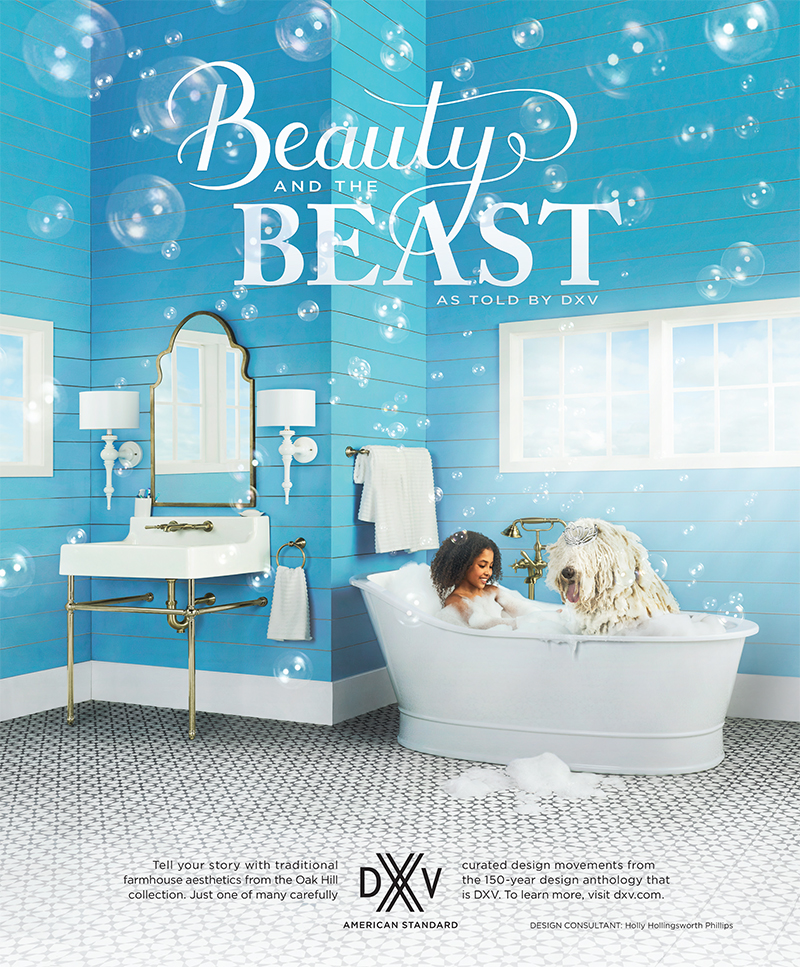 DXV Ad- Beauty and the Beast by Holly Hollingsworth Phillips
