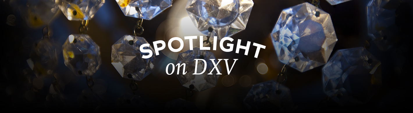 spotlight on dxv