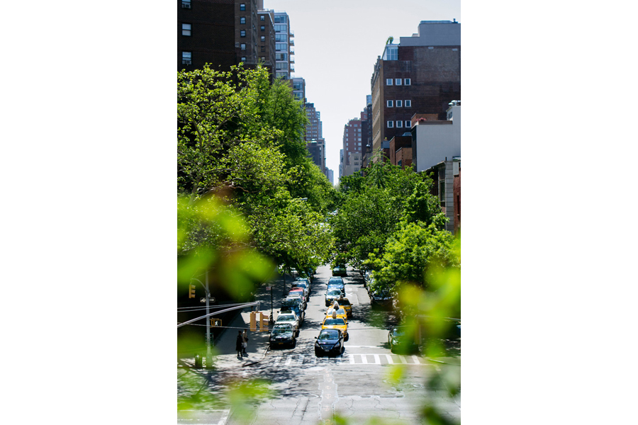 View of street from highline park