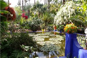 Outdoor Inspiration: Yves St. Laurent's Jardin Majorelle In the Heart of Marrakech