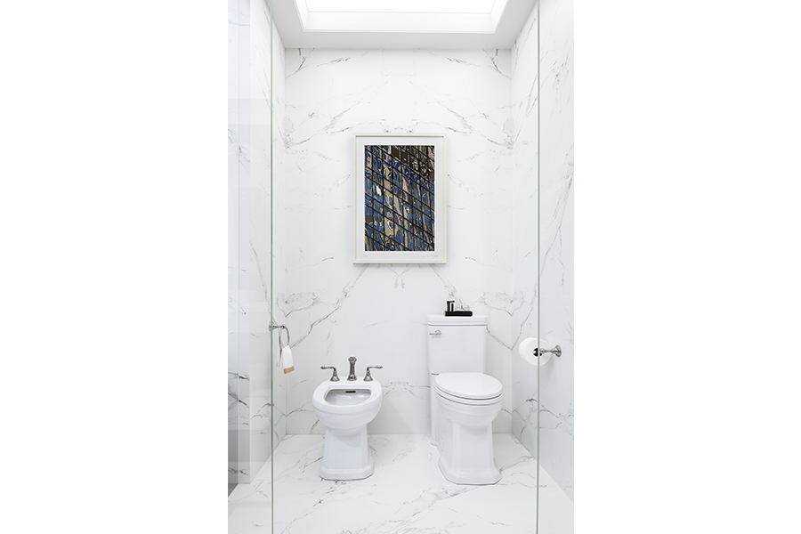 DXV Fitzgerald Toilet and Bidet