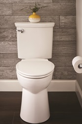 The winner of a 2018 GREEN GOOD DESIGN award, the self-cleaning VorMax Plus toilet from American Standard infuses LYSOL® cleaner into every flush, cleaning and freshening the bowl from top to bottom.