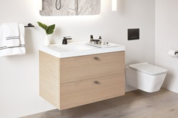 Showcasing clean, modern design, the DXV Modulus oak-paneled vanity, 36-inch lavatory, and coordinating solid surface accessory tray have been honored with a 2018 Red Dot Product Design Award.
