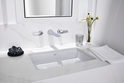 Contemporary Movement (1990 – Today) - Contemporary Photography by Laura Muller - Pop grand rectangle under counter lavatories and DXV Modulus wall mount widespread faucet