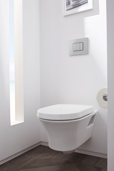 Contemporary Movement (1990 – Today) - Contemporary Photography by Laura Muller - Cossu wall mounted dual flush toilet