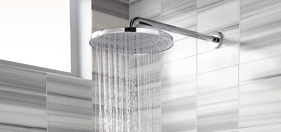 DXV Contemporary Accents Rain Showerhead