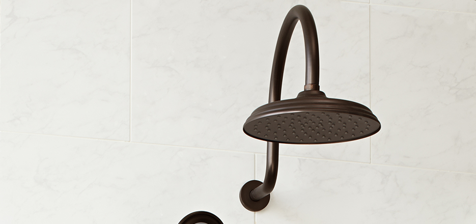 DXV Traditional Accents Rain Showerhead