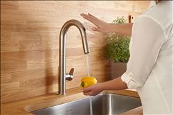 Beale pull-down kitchen faucet collection from American Standard